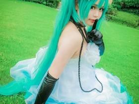 cosplay正片:初音未来山茶花